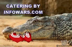 Crocodile Meme - trid2bnrml trid2bnrml deviantart