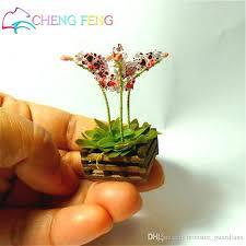 mini plants 2018 seeds mini bonsai orchid seeds indoor home miniature flower pot