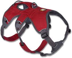 Four Paws Comfort Control Harness Top 10 Best Dog Harness In 2015 Reviews
