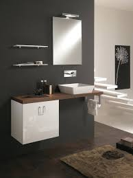 Compact Vanities Vanities Contemporary Small Luxury Bathroom Design With Compact