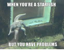 Starfish Meme - when you re a starfish but you have problems dank meme on me me