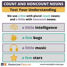 Exercises Count And Non Count Nouns Count And Noncount Nouns Quantity A Few A Test Your