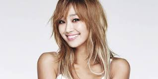 hyorin put on long hair sistar s hyorin saves a dying kitty severely injured from a car