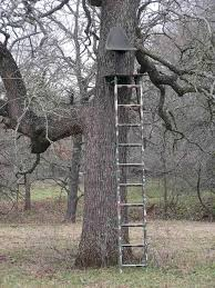 tree stand work or fail