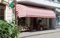 Drop Arm Awnings Awnings Manufacturer From Chennai