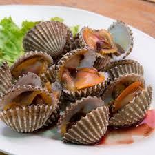 cuisiner des palourdes les palourdes de sang les aliments les plus dangereux ou mortels