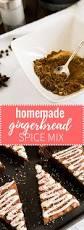 german gingerbread spice mix lebkuchengewuerz plated cravings