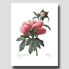 popular items for bedroom wall decor on etsy botanical print