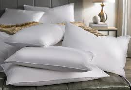 bedroom pillow fight in san francisco how to wash a memory foam