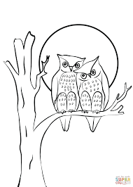 owls couple in love coloring page free printable coloring pages