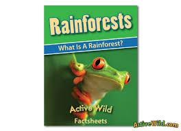 rainforest worksheets printable pdf factsheets download