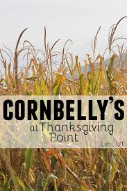cornbelly s at thanksgiving point lehi ut taste and tell