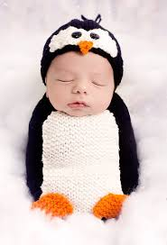 Halloween Penguin Costume Penguin Knitting Patterns Sleep Sacks Newborn Photo Props