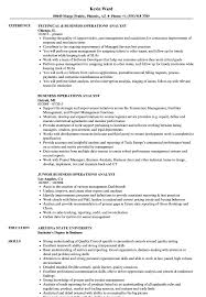 business analyst resume word exles for the root chron business operations analyst resume sles velvet jobs