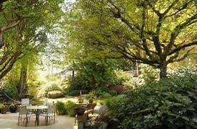 Trees Backyard A Place To Relax Backyard Garden Patio Table And Chairs U2026 Flickr
