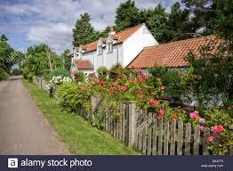 english rose garden stock photos u0026 english rose garden stock