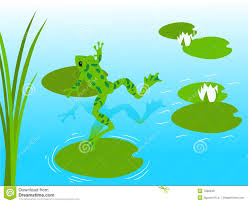 frog pond stock photos image 7338493