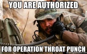 Throat Punch Meme - you are authorized for operation throat punch operation a go