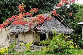 flower house okai flower house image by australian photographer grant dixon
