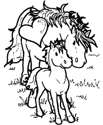 horse colour in horses coloring page large coloring pages horse