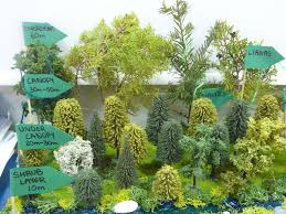 Under Canopy Rainforest by Grade 8 Tropical Rainforest Models Slc Geog Blog