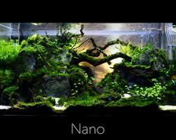 Nano Aquascaping Aquascaping Norge As