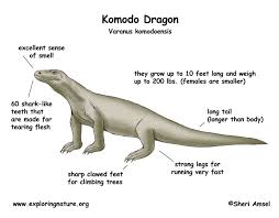 komodo color diagram jpg