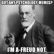 Psychology Memes - got any psychology memes i m a freud not sigmund frued meme