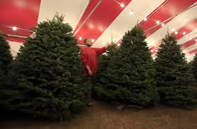 Christmas Tree Pick Up L A Officials Offer Ways Of Getting Rid Of Christmas Trees La Times