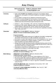 what is a good resume title template billybullock us