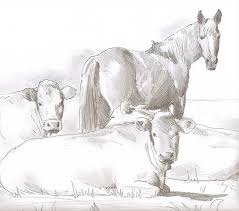 horse and cows sketch drawing by mike jory