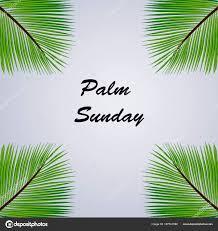 palm for palm sunday illustration palm leaves palm sunday stock vector