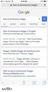 Meme Meaning And Pronunciation - 25 best memes about doggo definition doggo definition memes