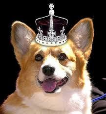 Queen Corgis Throwback Thursday The Royal Corgis The Daily Corgi
