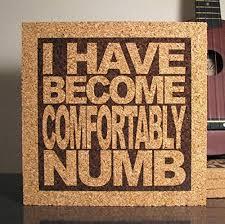 Lyrics For Comfortably Numb Amazon Com I Have Become Comfortably Numb Cork Lyric Trivet