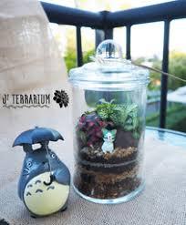 what u0027s in the terrarium j terrarium