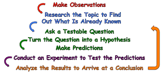 how do ecologists use the scientific method what is ecology