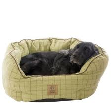 Dog Sofas For Large Dogs by Dog Beds For Large Dogs Ideas U2014 Jen U0026 Joes Design Dog Beds For