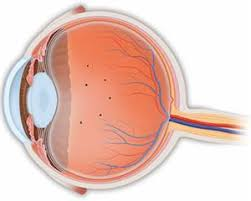 bright flashes of light in eye what are floaters and flashes american academy of ophthalmology