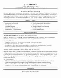 sales resume format professional sales resume format awesome sales rep sle resume