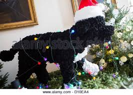 White House Dog Christmas Decorations by The 2012 White House Christmas Decorations Booksellers Hallway