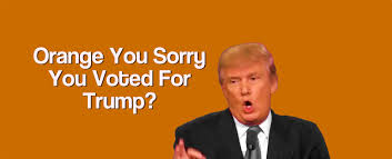 Orange Meme - orange you sorry you voted for trump page 2 sharing memes of
