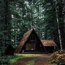forest house w addition a frame pinterest cabin house and tiny houses