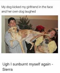 Dog Girlfriend Meme - my dog kicked my girlfriend in the face and her own dog laughed ugh