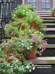 Plants For Patio by Front Door Potted Plant Ideas Potted Plant Ideas For Patio Potted