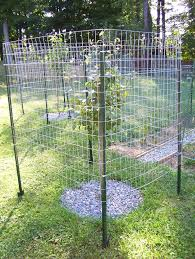 raised garden fence ideas to keep deer out gardening