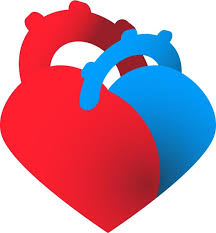 heart healthcare clipart cliparts and others art inspiration