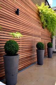 backyard privacy ideas 30 inexpensive but innovative backyard garden landscaping ideas