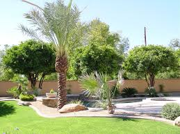 Front Yard Tree Landscaping Ideas Front Yard Landscaping Ideas With Rocks Interesting Plans Palm