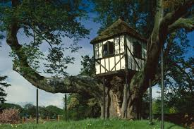 world u0027s oldest treehouse dating back to 1692 and where queen